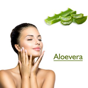 Aloevera powder